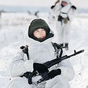 Не ходите без оружия в Арктику гулять