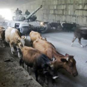 """Русский журнал :: """"Все зависит от того, насколько отчаянно будут сражаться осетины..."""""""