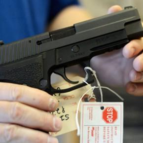 Новости 31.01.2013: В сенате Конгресса начались считающиеся в США историческими слушания по ужесточению контроля над оружием