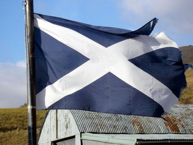 Шотландская разведка может «вступить в игру» в следующем году