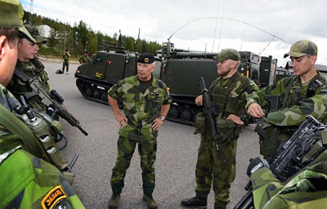 Шведская армия одна не продержится
