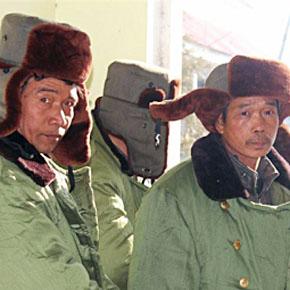Осваивать 9% пахотной земли Украины решением Януковича будет Трудармия Китая: обзор мнений по новости о продаже украинских чернозёмов Китаю