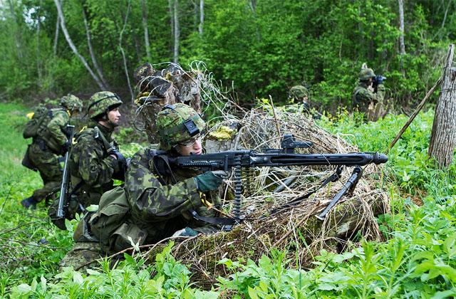 Эстония потратит треть военного бюджета 2014 года на закупку оружия