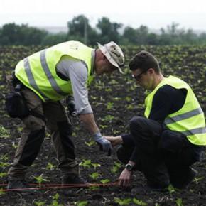 Новости 28.06.2015. Нидерланды завершили работы на месте крушения Boeing в Донбассе