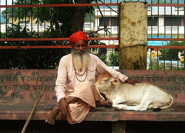 Индия сможет нарастить экспорт говядины в Россию, религиозные традиции не помеха