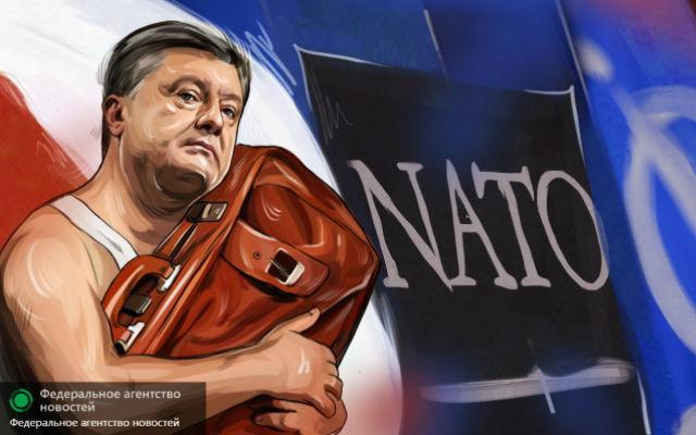 ФАН. Уже не смешно: как Порошенко научит НАТО воевать с Россией...