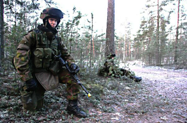 Тактика лесного боя: опыт войн с Финляндией