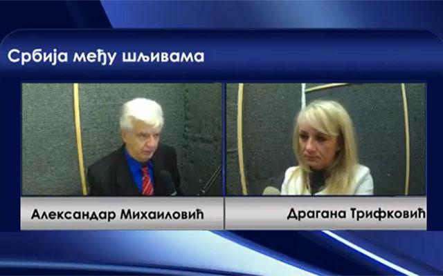 RADIO 2M. Србија међу шљивама 23.10.2017. гост, Драгана Трифковић. Да ли Русија има резервну варијанту за КИМ?
